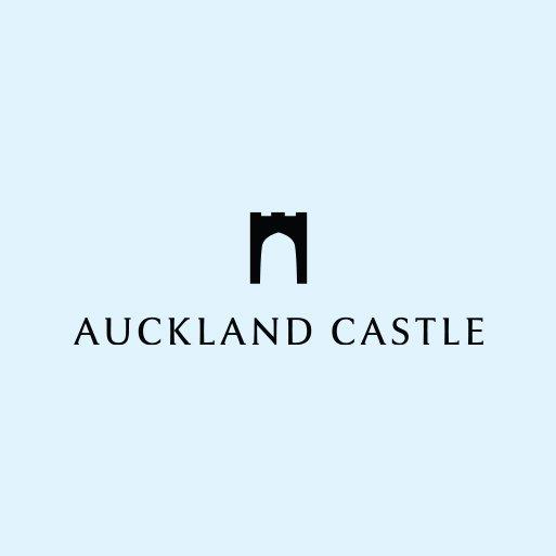 Flint_Client_Auckland_Castle